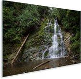 Meertje in het Nationaal park Forillon in Canada Plexiglas 180x120 cm - Foto print op Glas (Plexiglas wanddecoratie) XXL / Groot formaat!