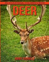 Deer! an Educational Children's Book about Deer with Fun Facts & Photos
