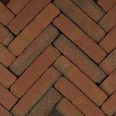 60 stuks! Art brick fabriti rd/br 5x20x6.5 cm Gardenlux