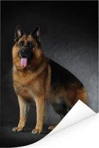Portret van een Duitse Herder met zwarte achtergrond Poster 120x180 cm - Foto print op Poster (wanddecoratie woonkamer / slaapkamer) / Huisdieren Poster XXL / Groot formaat!