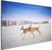 Herten op het strand Aluminium 90x60 cm - Foto print op Aluminium (metaal wanddecoratie)
