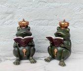 Set boekensteunen : koninklijke kikkers
