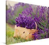 Verse lavendel in een mand Canvas 140x90 cm - Foto print op Canvas schilderij (Wanddecoratie woonkamer / slaapkamer)