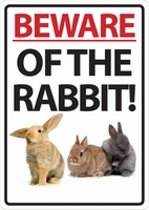 Beware Of The Rabbit!