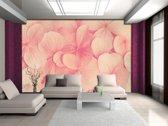 Fotobehang Papier Bloemen | Roze, Crème | 254x184cm