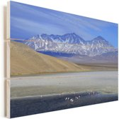 Berglandschap in Nationaal park Nevado Tres Cruces in Chili Vurenhout met planken 90x60 cm - Foto print op Hout (Wanddecoratie)