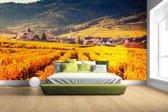 Fotobehang vinyl - Geel oranje gekleurde wijngaard breedte 380 cm x hoogte 265 cm - Foto print op behang (in 7 formaten beschikbaar)