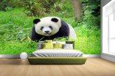 Grote panda in het gras Fotobehang 380x265