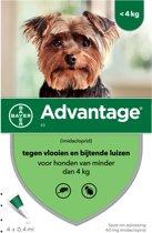 Bayer advantage hond 4 pipetten 40 tot 4 kg 4 pip