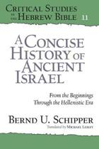 A Concise History of Ancient Israel