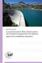 Caracterisation Non Destructive de L'Endommagement de Betons