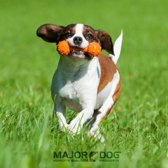 Mini halter Major Dog