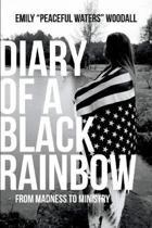 Diary of a Black Rainbow