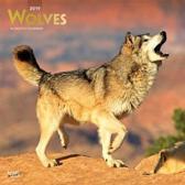 Wolves Kalender 2019