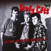 Stray Cats - Live From Asbury Park..
