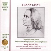 Liszt Piano Music Vol.16