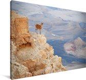 Bok op de rand van een rots in de Makhtesh Ramon Canvas 140x90 cm - Foto print op Canvas schilderij (Wanddecoratie woonkamer / slaapkamer)