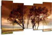 Canvas schilderij Bomen | Bruin, Wit, Zwart | 150x80cm 5Luik