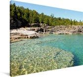Bos bij het Nationaal park Bruce Peninsula in Canada Canvas 120x80 cm - Foto print op Canvas schilderij (Wanddecoratie woonkamer / slaapkamer)