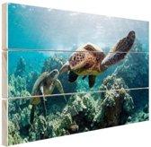 Twee zeeschildpadden Hout 60x40 cm - Foto print op Hout (Wanddecoratie)