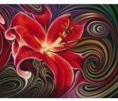 Artibalta Diamond painting kit Red Phantasy AZ-1395 50 x 40 cm