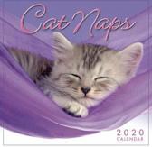 Cat Naps 2020 Mini Wall Calendar