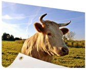 Koe in de natuur Tuinposter 120x80 cm - Tuindoek / Buitencanvas / Schilderijen voor buiten (tuin decoratie)