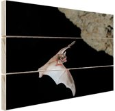 Vleermuis in grot Hout 120x80 cm - Foto print op Hout (Wanddecoratie)