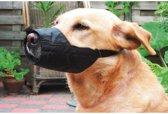 Beeztees Veiligheidsmuilband - Hond - M-Large - 16 cm
