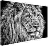Leeuw zwart/wit in de winter Canvas 60x40 cm - Foto print op Canvas schilderij (Wanddecoratie woonkamer / slaapkamer) / Dieren Canvas Schilderijen