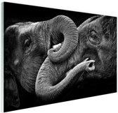 Verstrengelde olifanten Glas 90x60 cm - Foto print op Glas (Plexiglas wanddecoratie)