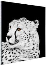 Luipaard zwart-wit  Aluminium 120x180 cm - Foto print op Aluminium (metaal wanddecoratie) XXL / Groot formaat!