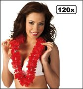 120x Hawaii slinger rood