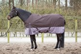 Harry's Horse Deken Thor 300gr 2Tone Seal Brown 175cm