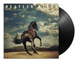 Western Stars (LP)