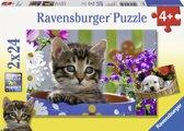 Ravensburger Schattige viervoeters Twee puzzels van 24 stukjes