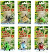 Pull Back Insect