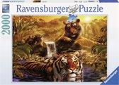 Ravensburger puzzel Aan het water - Legpuzzel - 2000 stukjes
