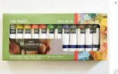Olieverf - Oil Paint - 12 x 12 ml - Van Bleiswijck Holland - Hobbyverf - Verfset