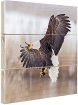 Adelaar winterlandschap Hout 60x40 cm - Foto print op Hout (Wanddecoratie)