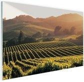 Wijngaarden in de Verenigde Staten Glas 120x80 cm - Foto print op Glas (Plexiglas wanddecoratie)