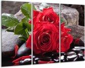 Glasschilderij Roos   Rood, Zwart, Groen   120x80cm 3Luik   Foto print op Glas    F006149