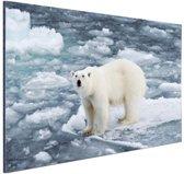 Ijsbeer op Spitsbergen Aluminium 30x20 cm - klein - Foto print op Aluminium (metaal wanddecoratie)