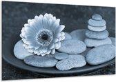 Schilderij | Canvas Schilderij Bloem, Stenen | Blauw, Grijs | 120x70cm 1Luik | Foto print op Canvas