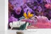 Fotobehang vinyl - Knalroze waterplanten met een zwemmende Anemoon-vis in een aquarium breedte 420 cm x hoogte 280 cm - Foto print op behang (in 7 formaten beschikbaar)