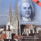 Bach Im Regensburger Dom