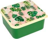 Lunchbox Tropical Palm
