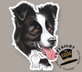 Magneet Hond Border Collie
