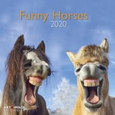 Funny Horses Kalender 2020 incl. jaarposter