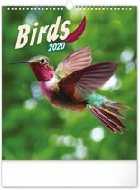 Birds Kalender 2020